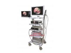 史克斯纤维胆道镜/纤维输尿管镜/纤维喉镜/纤维支气管镜