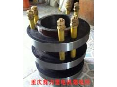 重庆赛力盟产高压电机集电环YRKK500-4P 710KW
